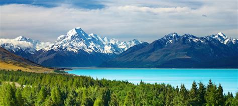 Wanna Get Away? New Zealand Will Give You a Free Trip