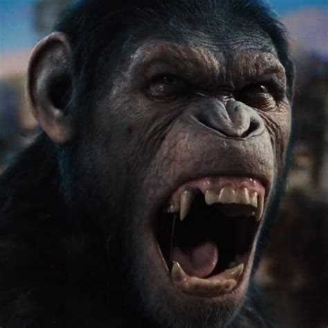Bradshaw Watch – 'Dawn of the Planet of the Apes' (2014